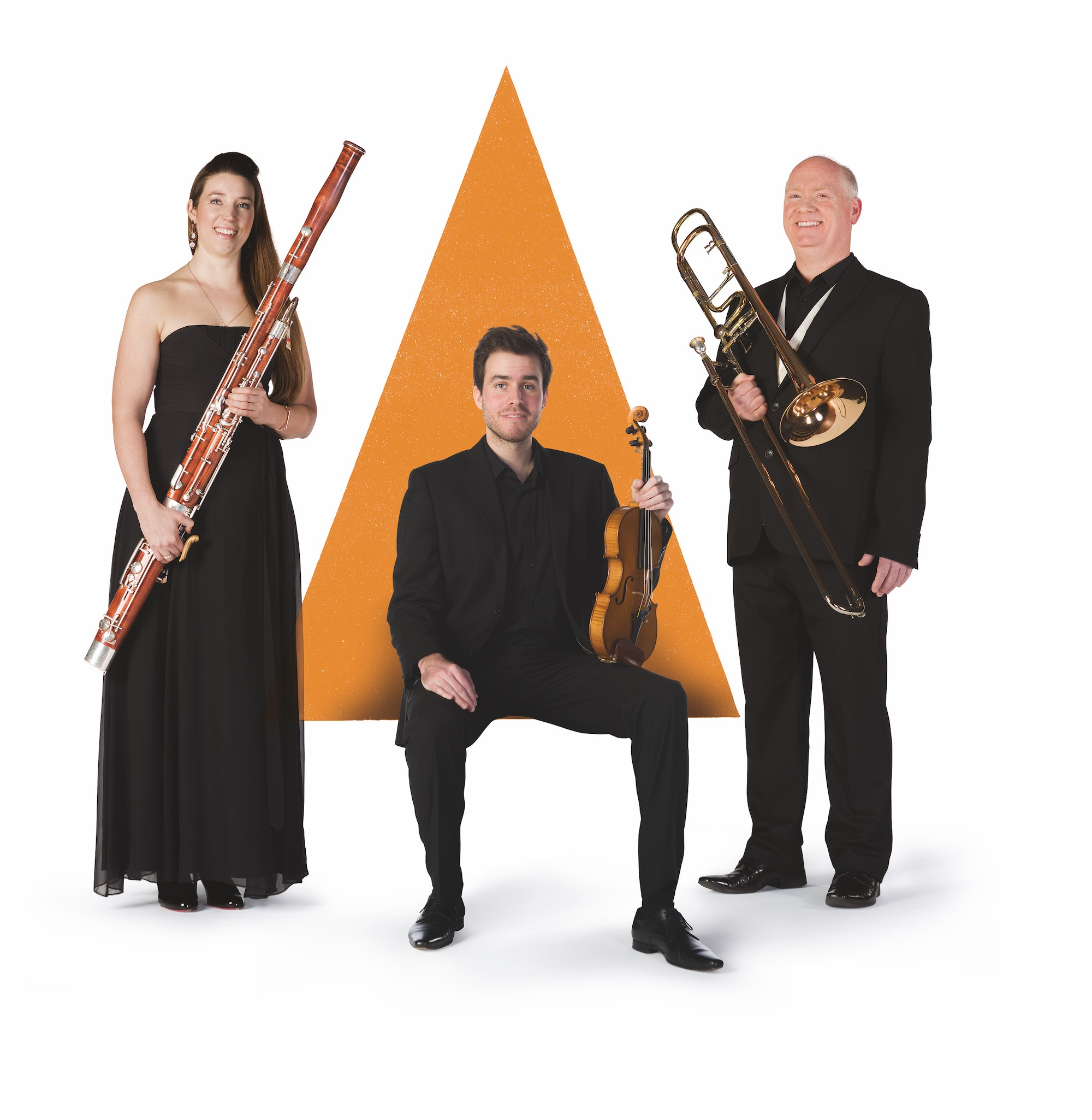 Picture of The Bournemouth Symphony Orchestra members