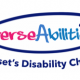 Credit: Diverse Abilities Charity