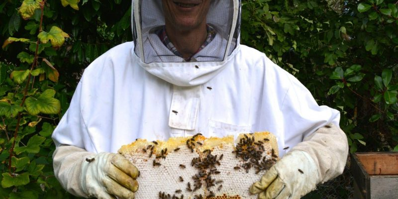 A man in a white beekeeping suit holding a bees