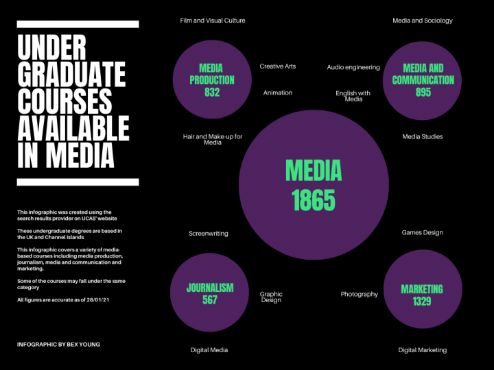 Infographic showing numbers and types of media-based courses at an undergraduate level
